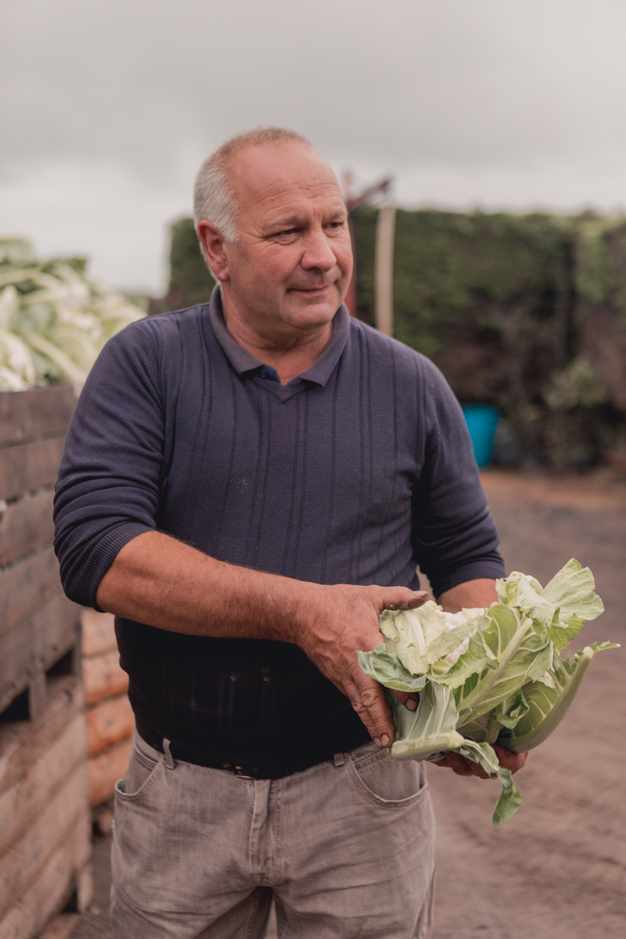 Jersey Local Produce - Manor Farm